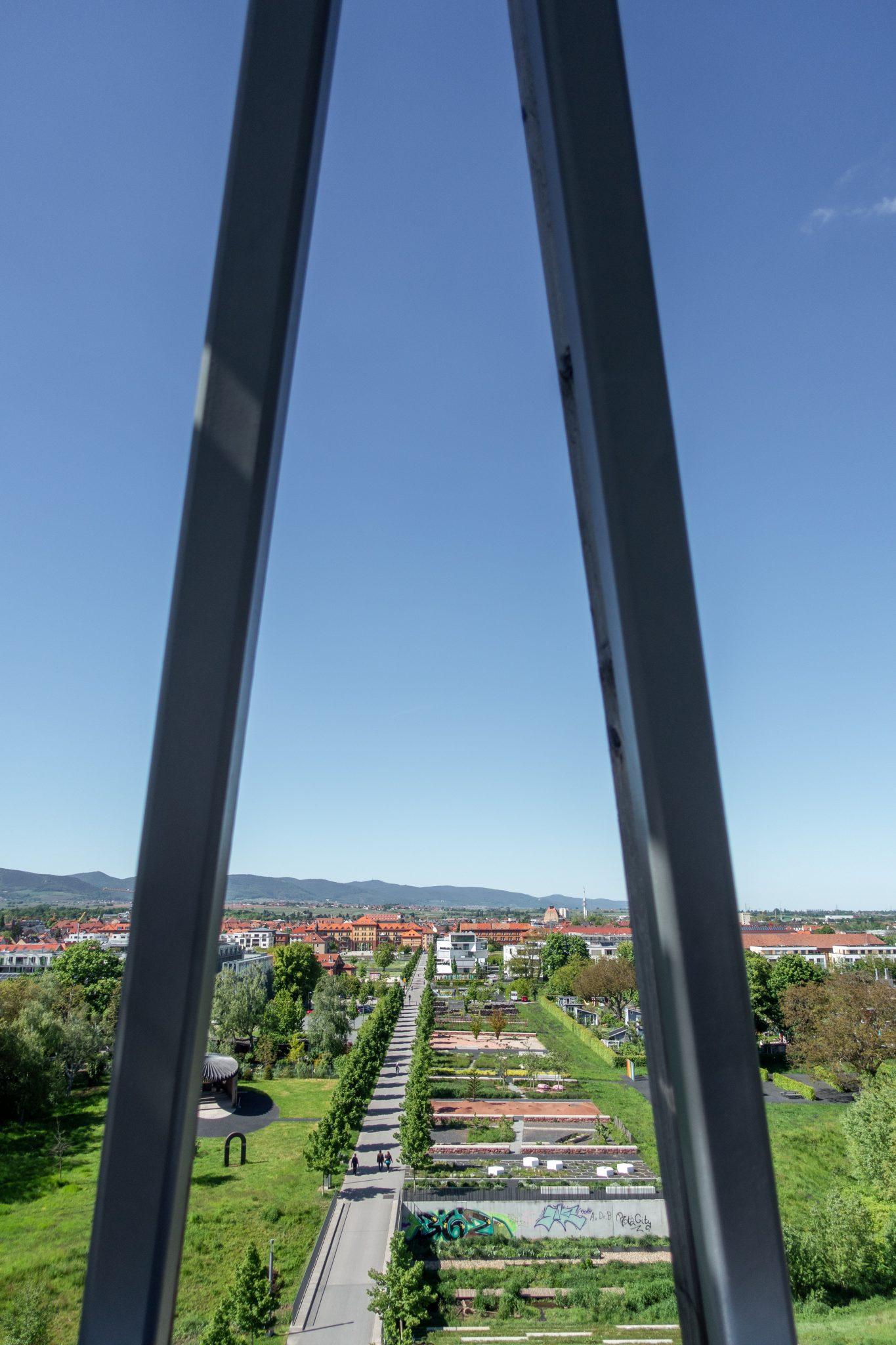 Landau-pfalz-sehenswürdigkeit-südpark-aussicht