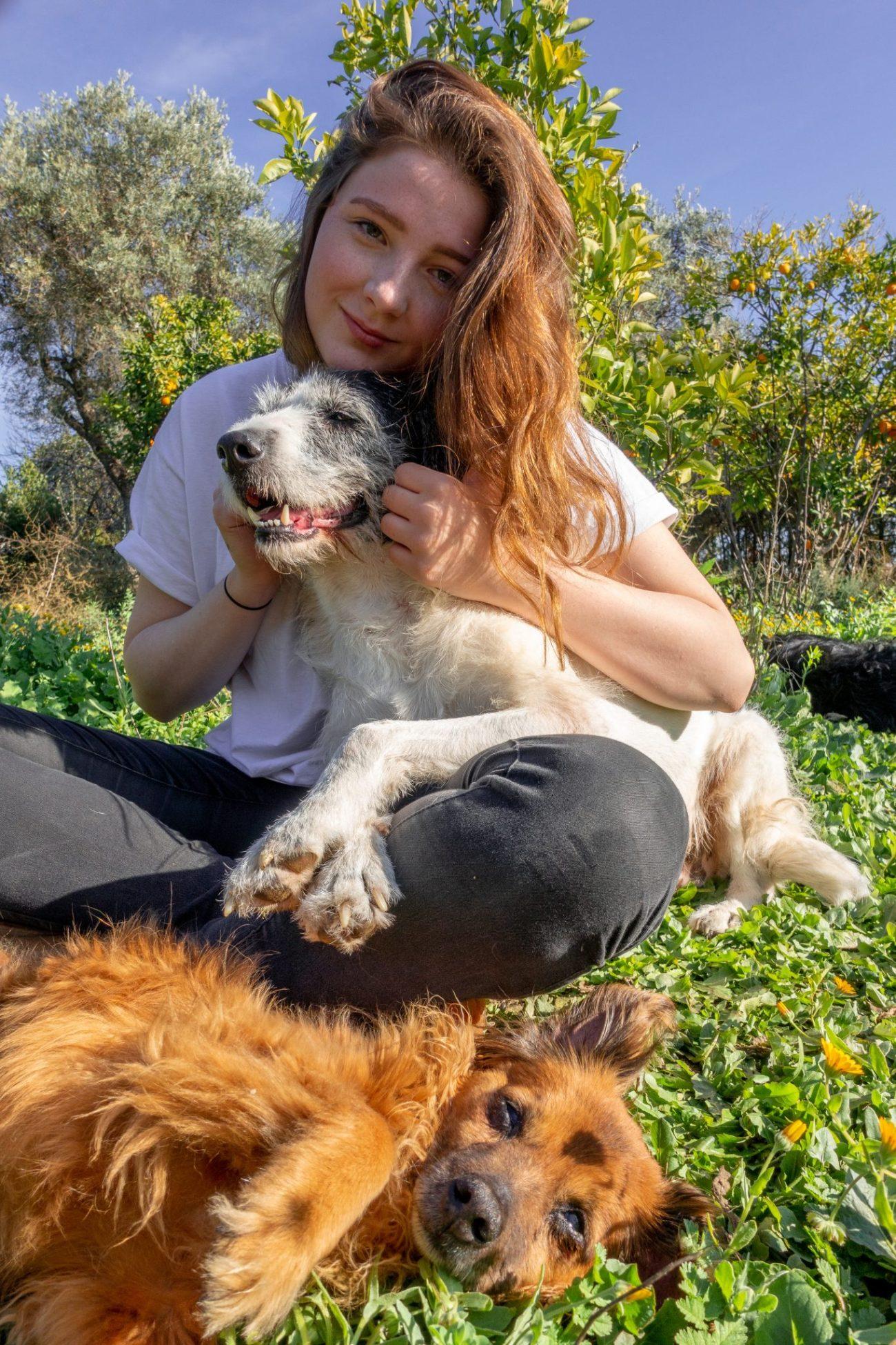 housesitting-guide-kostenlos-wohnen-andalusien-hunde-portrait