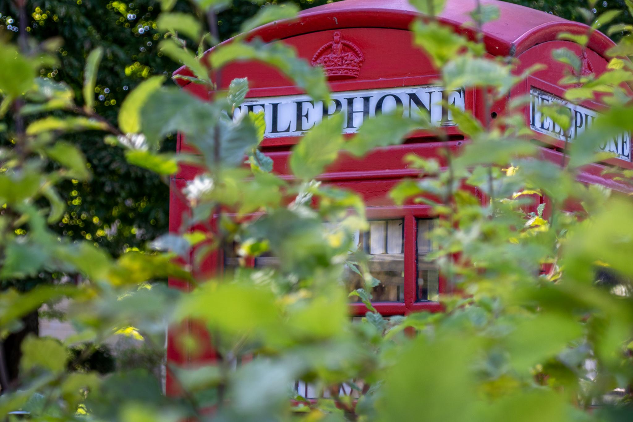 hameln-tipps-bürgerpark-telfefonzelle