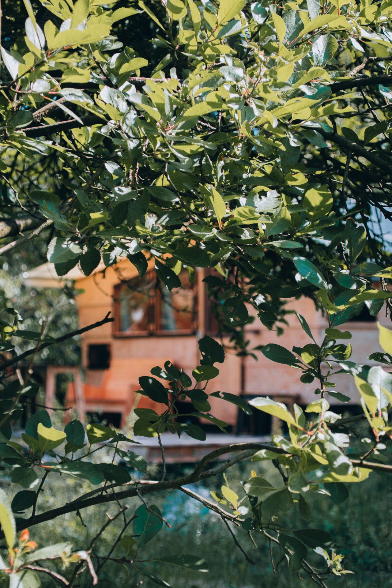 destinature-dorf-hütten-wendland-tiny-house-urlaub