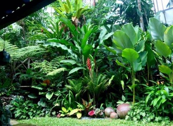 Tropical Backyard Ideas: 20+ Beautifully Refreshing Decors ... on Tropical Backyards  id=73711