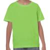 G5000B    lime green 1