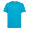 R155B    turquoise 1