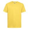 R155B    yellow 1