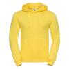 R575M    yellow 1