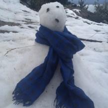 Floco de Neve ou Olaf, as crianças não entraram em acordo
