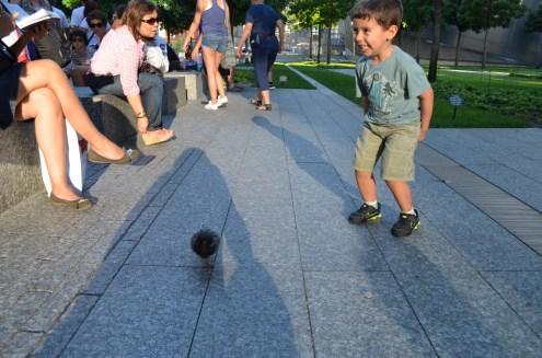 No 9/11 Memorial com os pombinhos