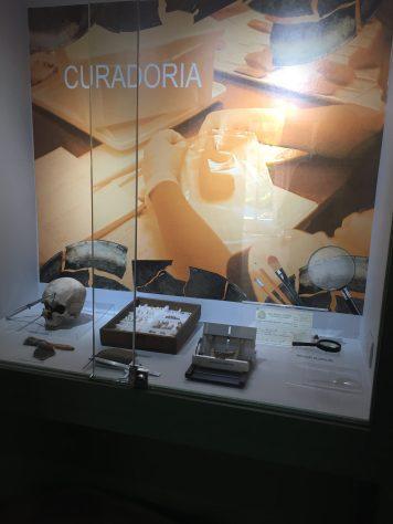 Acervo do museu
