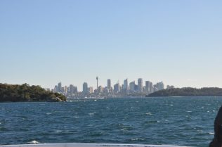 (C) Jule Reiselust: Skyline von Sydney