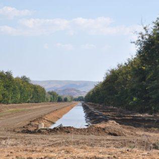 (C) Jule Reiselust: Bewässerungsgraben für die Sandelholzplantage.