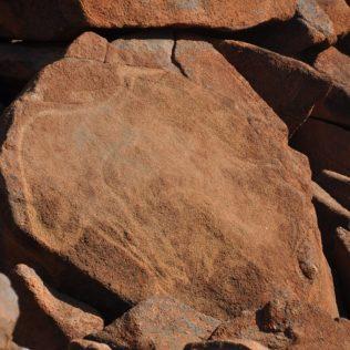 (C) Jule Reiselust: Rock engraving in der Deep Gorge bei Dampier.