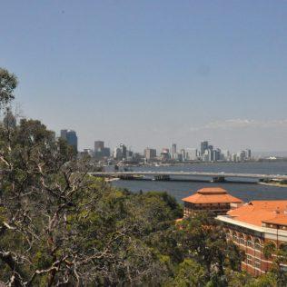 (C) Jule Reiselust: Blick vom Kings Park Richtung CBD von Perth.