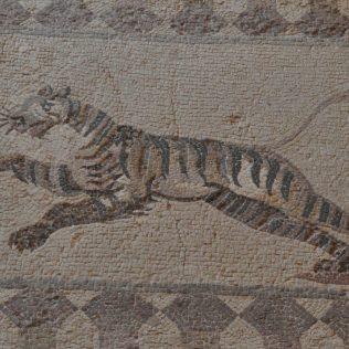 (C) Jule Reiselust: Tigermosaik