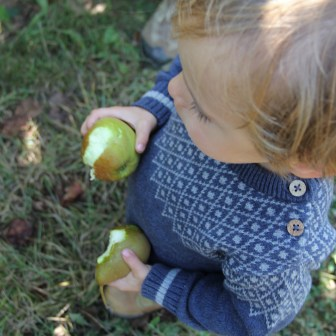 Apfeloderbirne