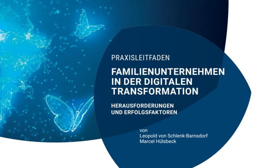 Praxisleitfaden Digitalisierung WIFU