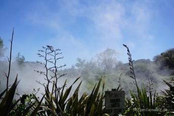 Zeltplatz in Waikite Valley - heiße Quellen