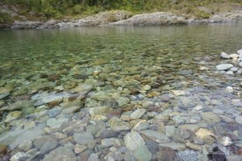 Pelarus River/ Südinsel