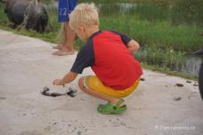 Anton hilft den Fischern von An Bang