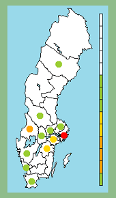 D1-grenen: Alfort i Eskilstuna