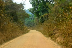 Huvudvägen Nigeria-Kamerun