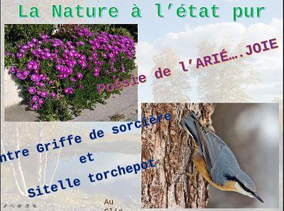 La Nature à l'état pur – Poésie de l'Arié…Joie