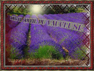 Sous le soleil du Vaucluse