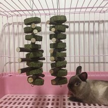 BEST CHEW TOYS FOR BUNNIES