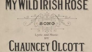 Song lyrics to My Wild Irish Rose (1899) Written by Chauncey Olcott