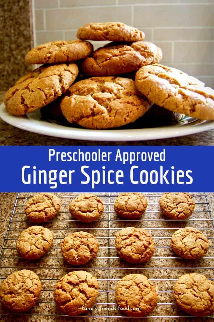 Satisfying ginger spice cookies that both adults and children will love!  Baked to avoid 'sugar highs' by using oats and agave to give a lower GI.