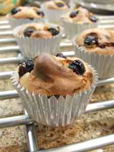 flourless almond butter cupcakes with blueberries