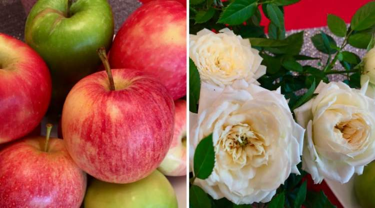 apples & roses - M&S
