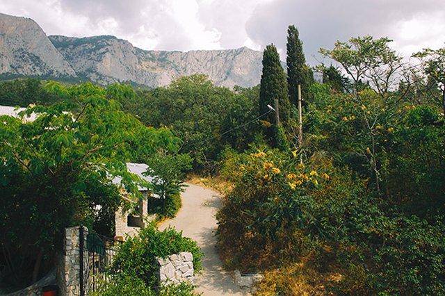 лагерь Панда, Ялта