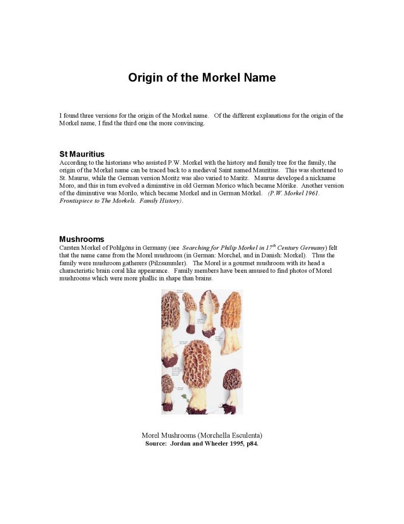 thumbnail of Origin of Morkel name
