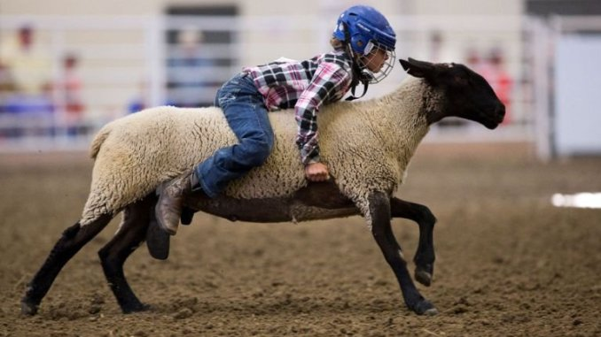 Who Are The Radicals Behind The Anti-Mutton Bustin Jihad?