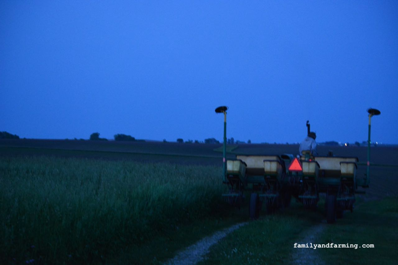 Planting a corn field in the dusk.