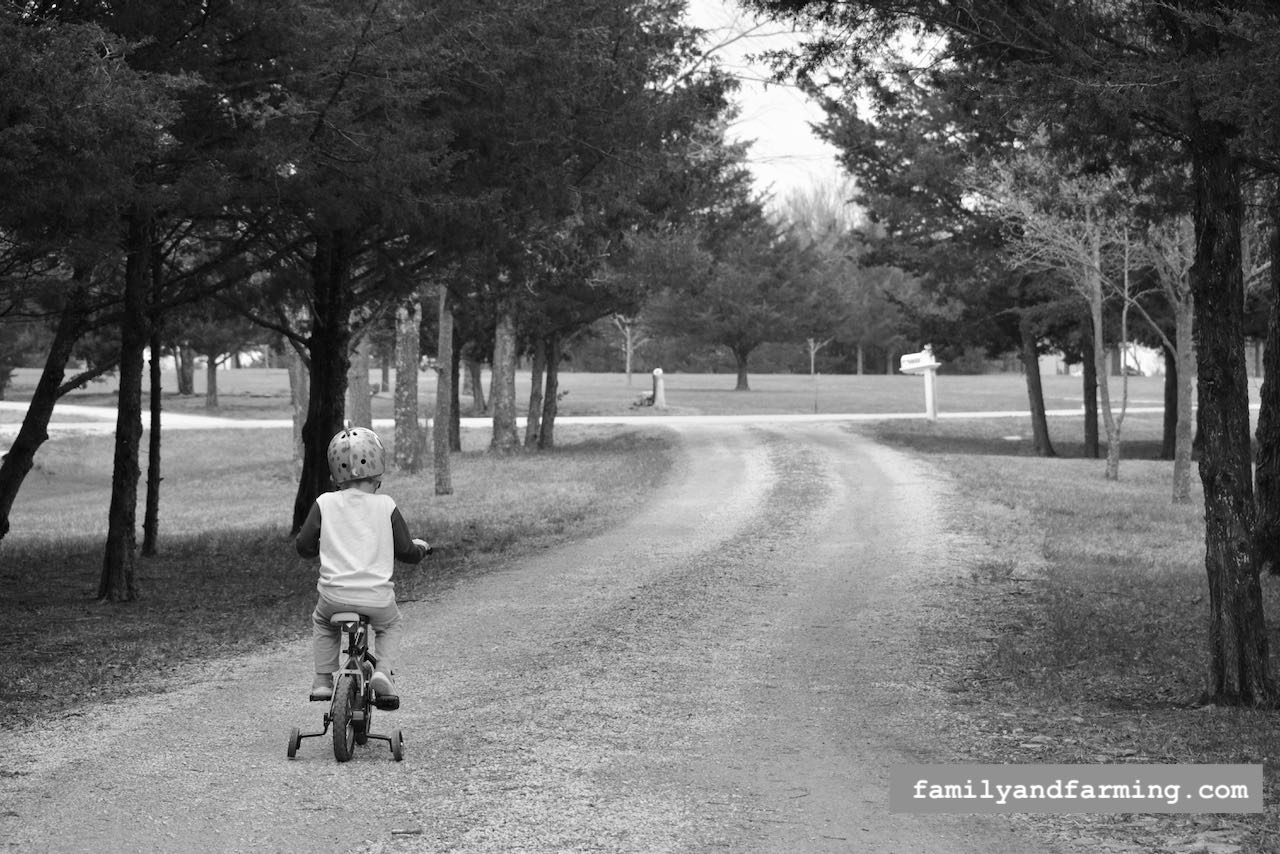 A little boy on a bicycle