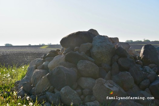 A Large Pile of Field Rocks