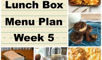 School Lunch Menu Plan Week 5