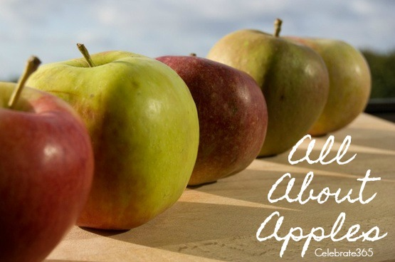 Celebrate Apples with Celebrate365