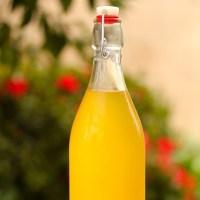 Homemade Limoncello & Tangelocello