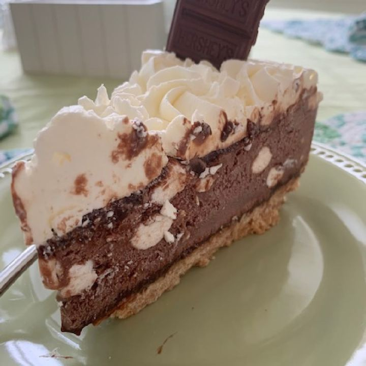 Side view of s'mores ice cream torte on a green plate.