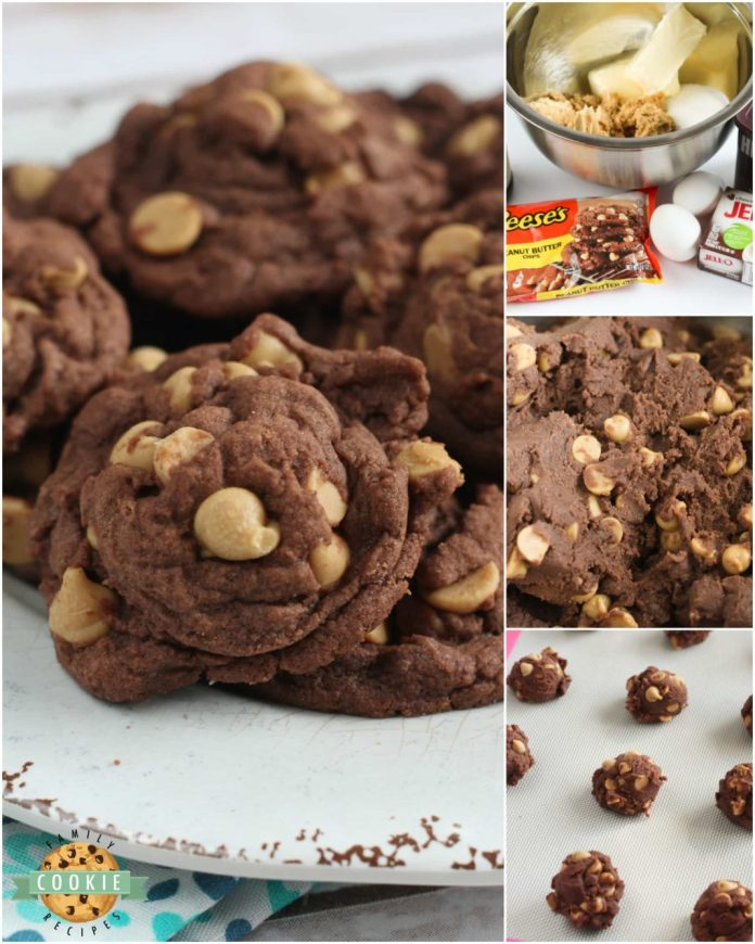 Step-by-step photos on how to make Peanut Butter Chip Chocolate Cookies - filled with Reese's peanut butter chips and chocolate pudding mix!
