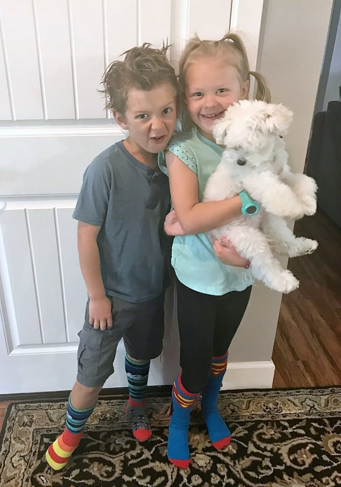 Crazy Hair Day/Crazy Sock Day - Family Cookie Recipes