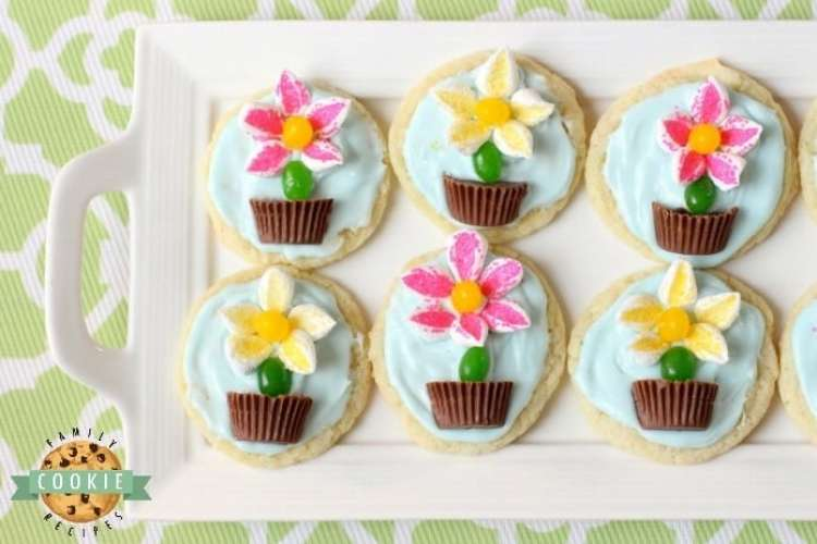 Marshmallow Flower Cookies are easy to make and perfect for Spring baking! Everyone loves these cute treats topped with marshmallow flowers with a jelly bean stem, in a chocolate pot!