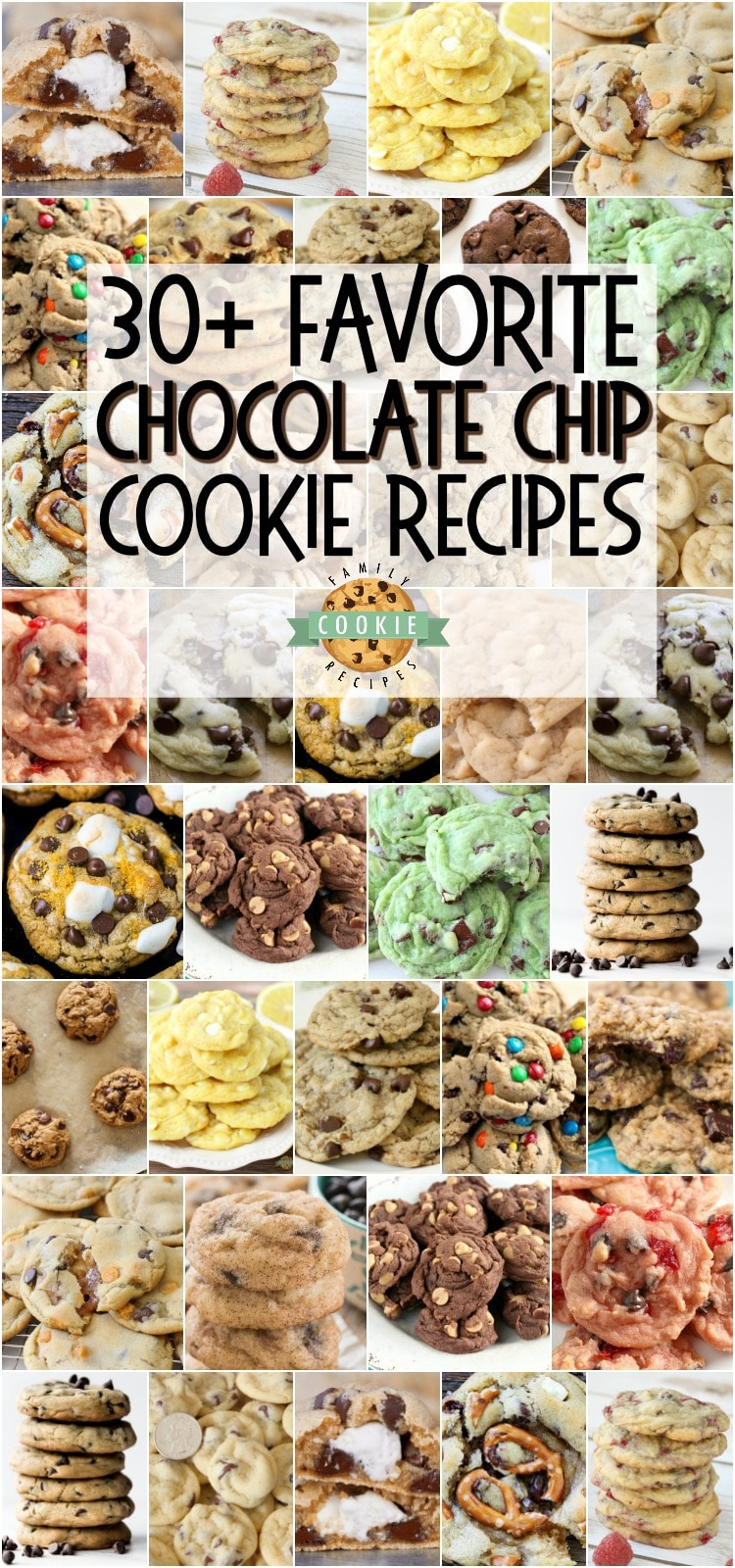 Homemade Chocolate Chip Cookie - everything from Classic Chocolate Chip, to Peanut Butter Chocolate Chip and even to Cherry Chocolate Chip cookies, this collection of best chocolate chip cookie recipes is sure to become a favorite! #cookies #chocolatechip #baking #dessert #homemade #chocolate #recipes from FAMILY COOKIE RECIPES
