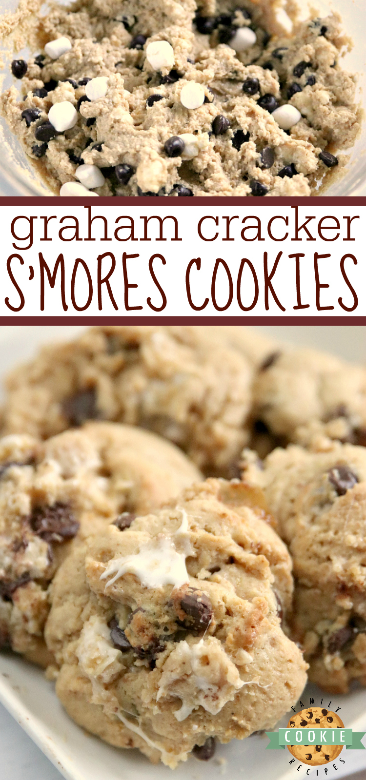 Graham Cracker S'mores Cookies are made with graham cracker crumbs, marshmallows and chocolate chips. All of the elements of a s'more in a deliciously soft and chewy cookie recipe! via @familycookierecipes