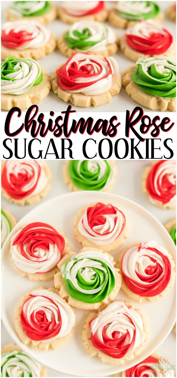 Frosted Rose Sugar Cookies are buttery, soft sugar cookies with a delicious swirled rosette on top! This sugar cookie recipe doesn't require any chilling and you don't have to roll them out either! Elegant Sugar Cookies that look like roses that are perfect as gifts! #cookies #Christmas #rose #roses #frosting #dessert #baking #holidays #recipe from FAMILY COOKIE RECIPES