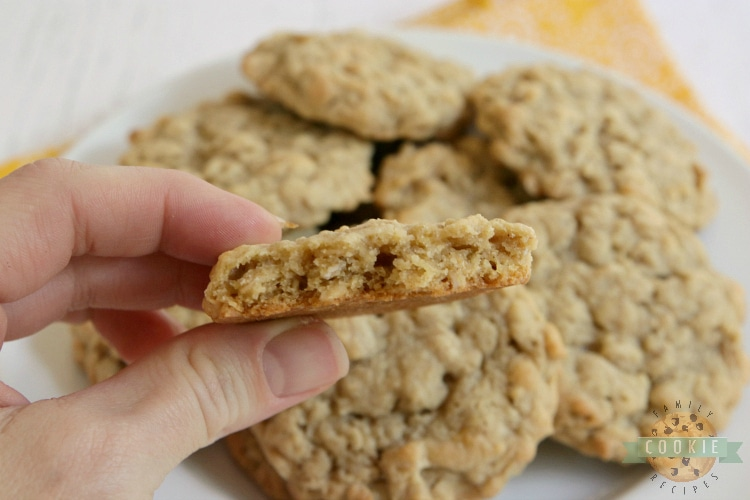 Bite taken out of oatmeal cookie