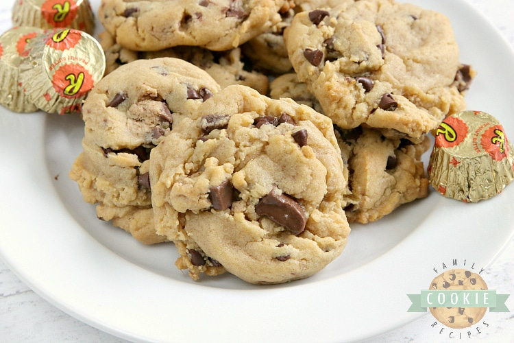 Reese's Peanut Butter Pudding Cookies are soft and chewy peanut butter cookies made with vanilla pudding mix and chopped up Reese's peanut butter cups too!