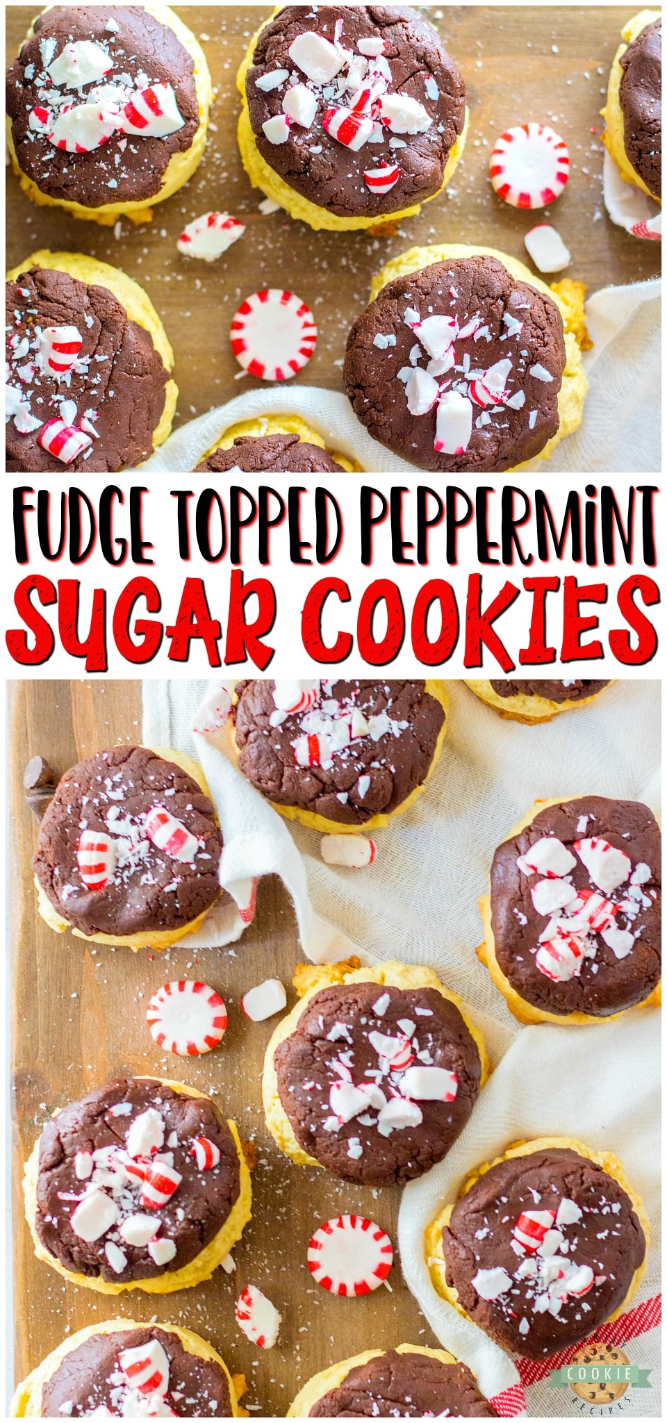 Peppermint Fudge Sugar Cookies are two favorites in one! Soft sugar cookies topped with a chocolate peppermint fudge & crushed candy canes for an over-the-top Christmas treat!